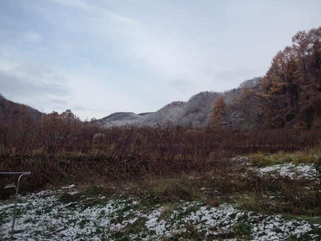 今年も雪の季節